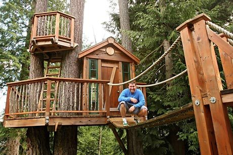 normal-tree-house3